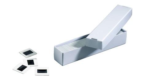 Archivbox FOCUS II